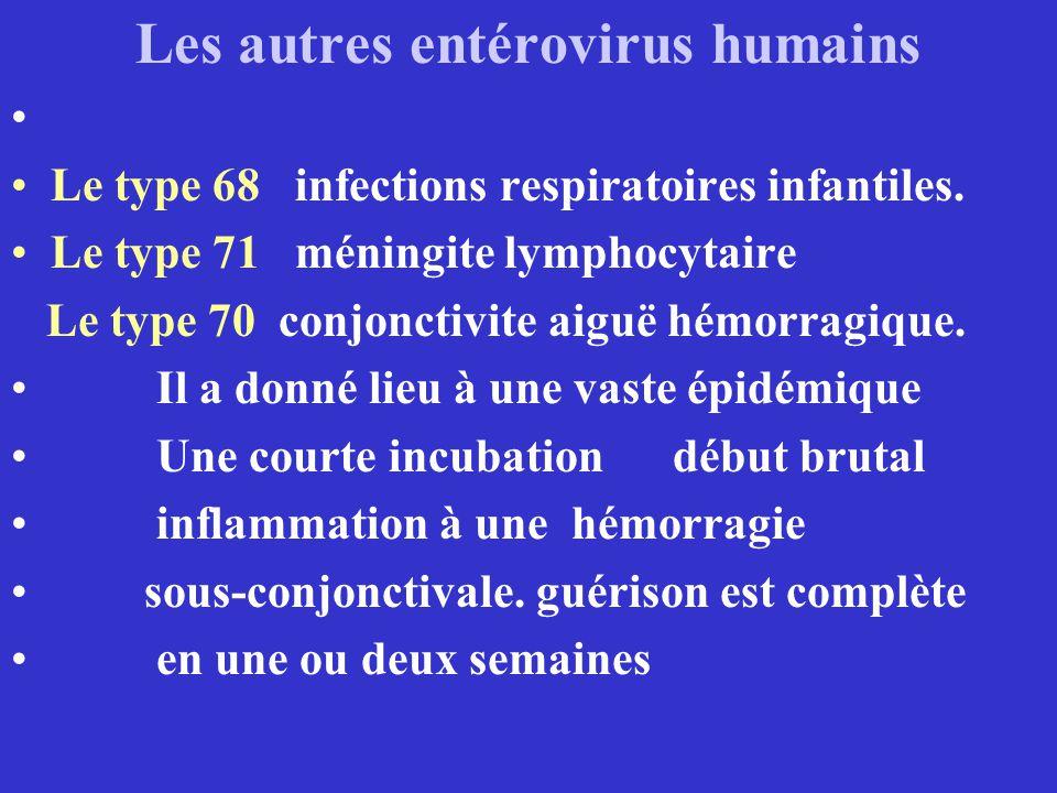 Les autres entérovirus humains