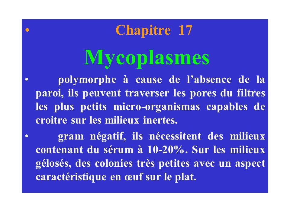 Chapitre 17 Mycoplasmes.