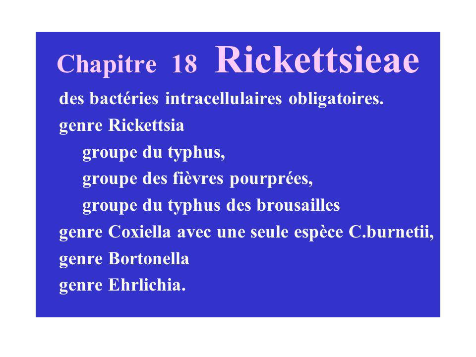 Chapitre 18 Rickettsieae