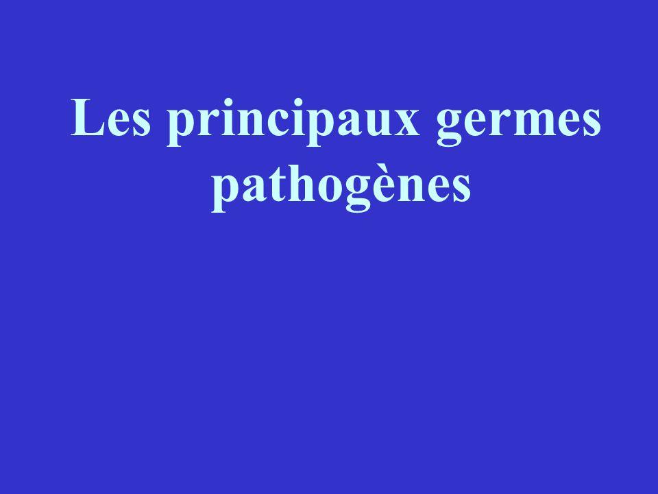 Les principaux germes pathogènes