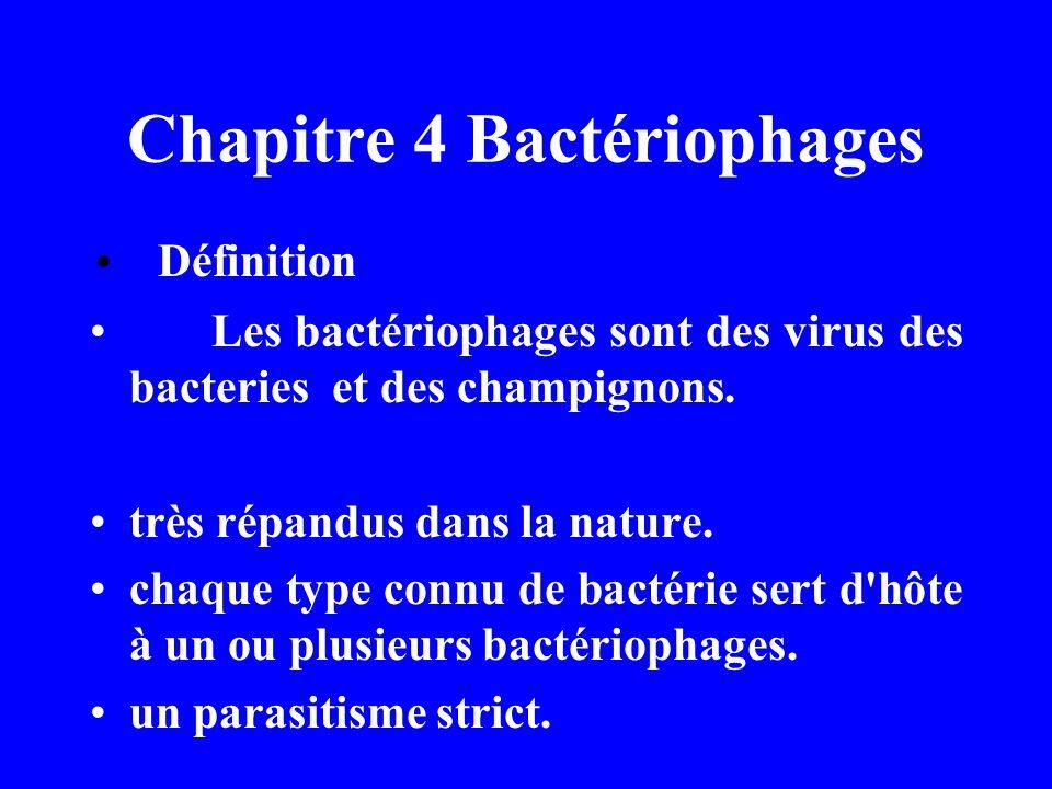 Chapitre 4 Bactériophages
