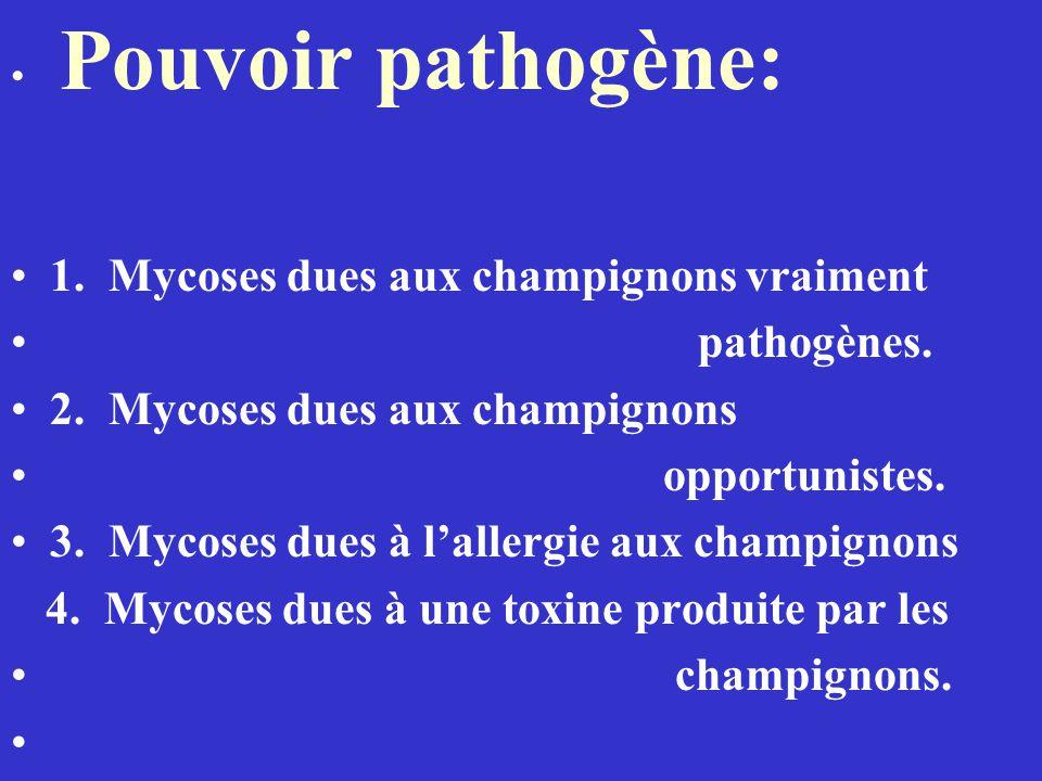 1. Mycoses dues aux champignons vraiment pathogènes.