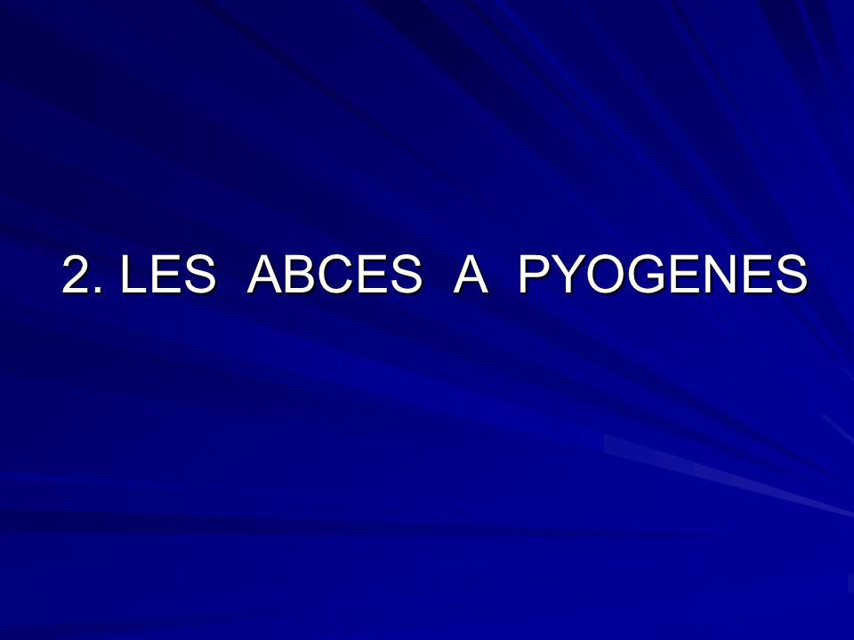 2. LES ABCES A PYOGENES