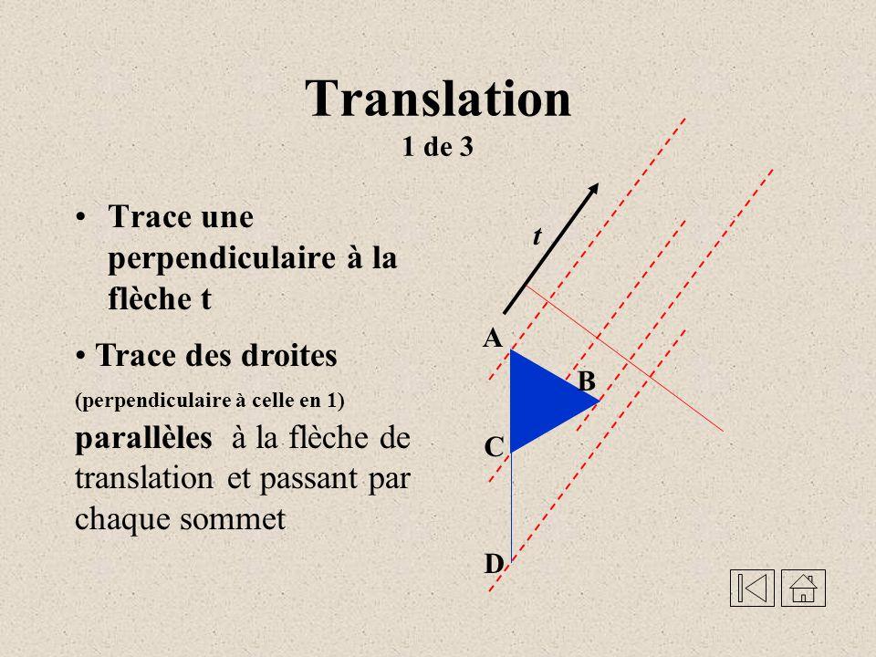 Translation 1 de 3 Trace une perpendiculaire à la flèche t
