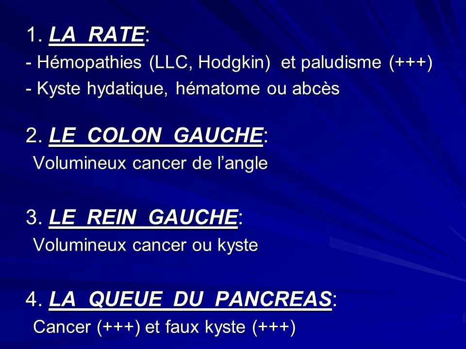 1. LA RATE: 2. LE COLON GAUCHE: 3. LE REIN GAUCHE: