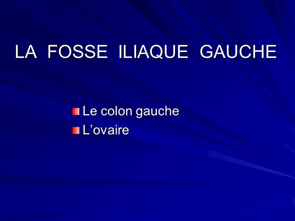 LA FOSSE ILIAQUE GAUCHE