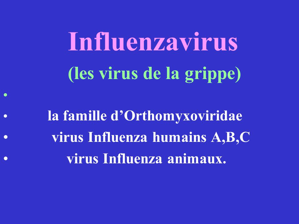 (les virus de la grippe)