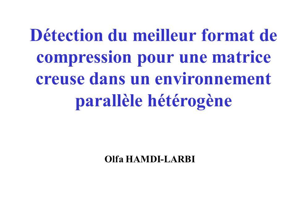 Détection du meilleur format de compression pour une matrice creuse dans un environnement parallèle hétérogène