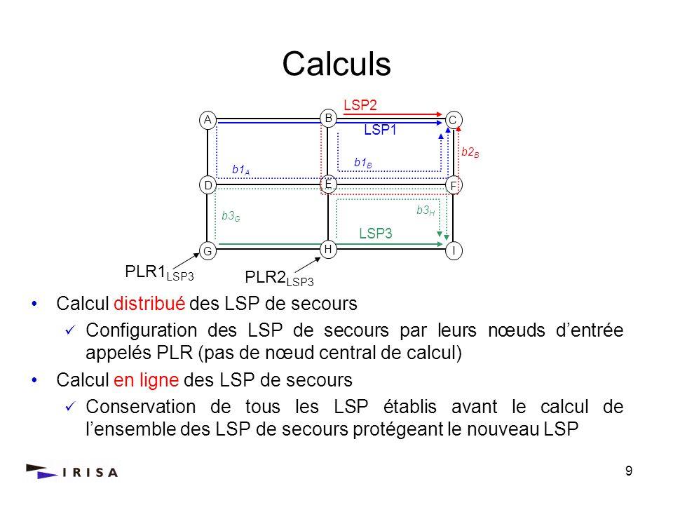 Calculs Calcul distribué des LSP de secours