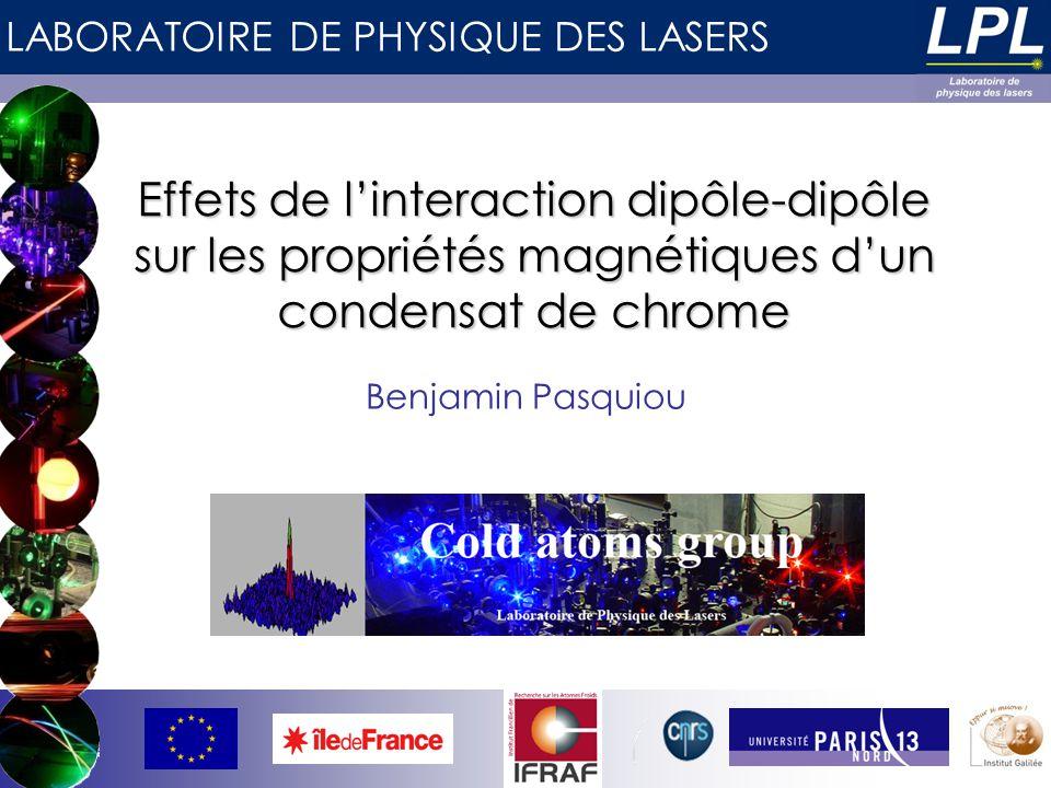 Effets de l'interaction dipôle-dipôle sur les propriétés magnétiques d'un condensat de chrome