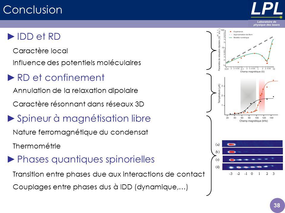 Conclusion IDD et RD RD et confinement Spineur à magnétisation libre