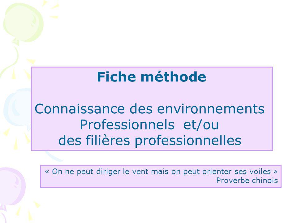 Connaissance des environnements Professionnels et/ou