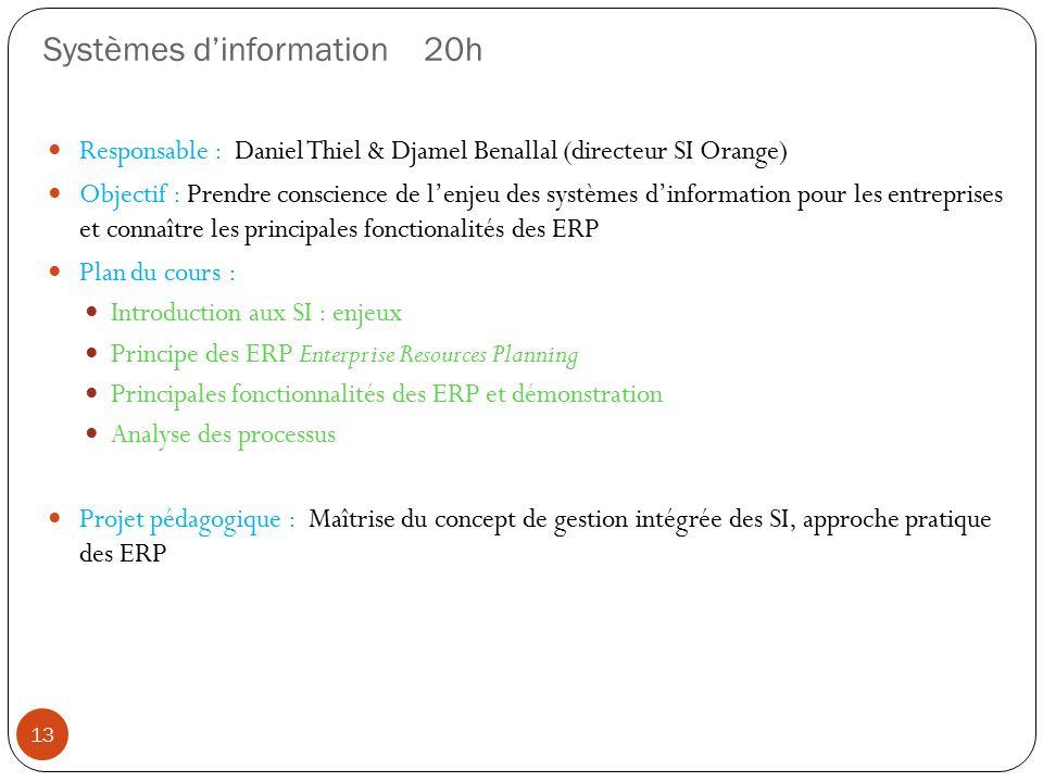 Systèmes d'information 20h