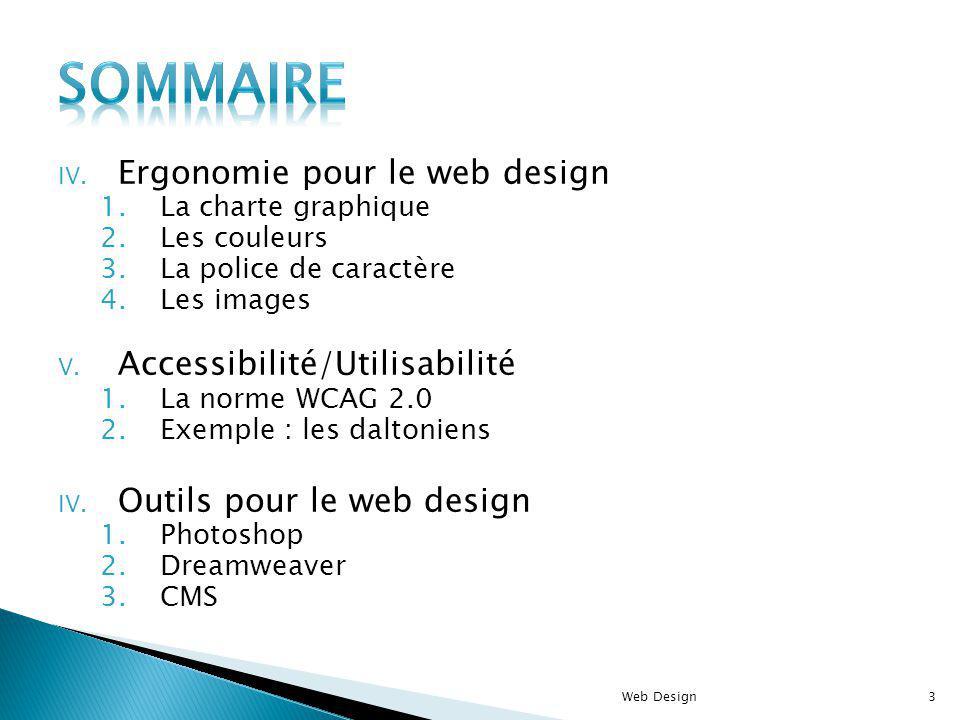 Sommaire Ergonomie pour le web design Accessibilité/Utilisabilité