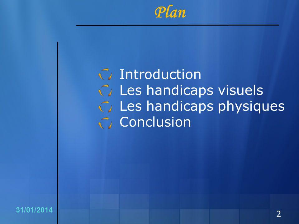 Plan Les handicaps visuels Les handicaps physiques Conclusion