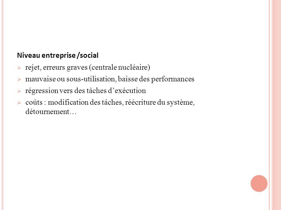 Niveau entreprise /social