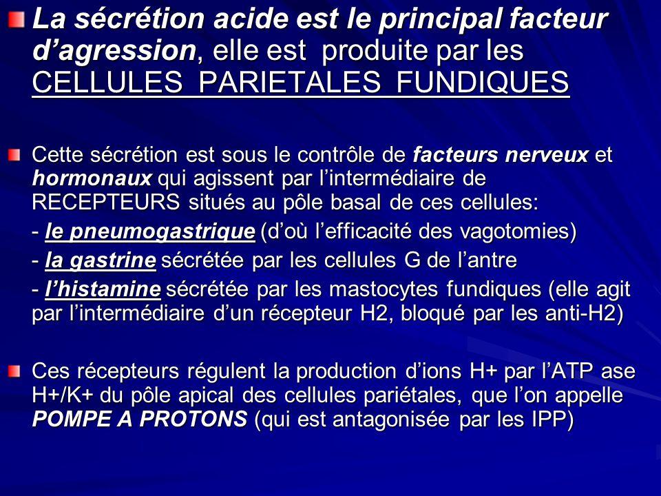 La sécrétion acide est le principal facteur d'agression, elle est produite par les CELLULES PARIETALES FUNDIQUES