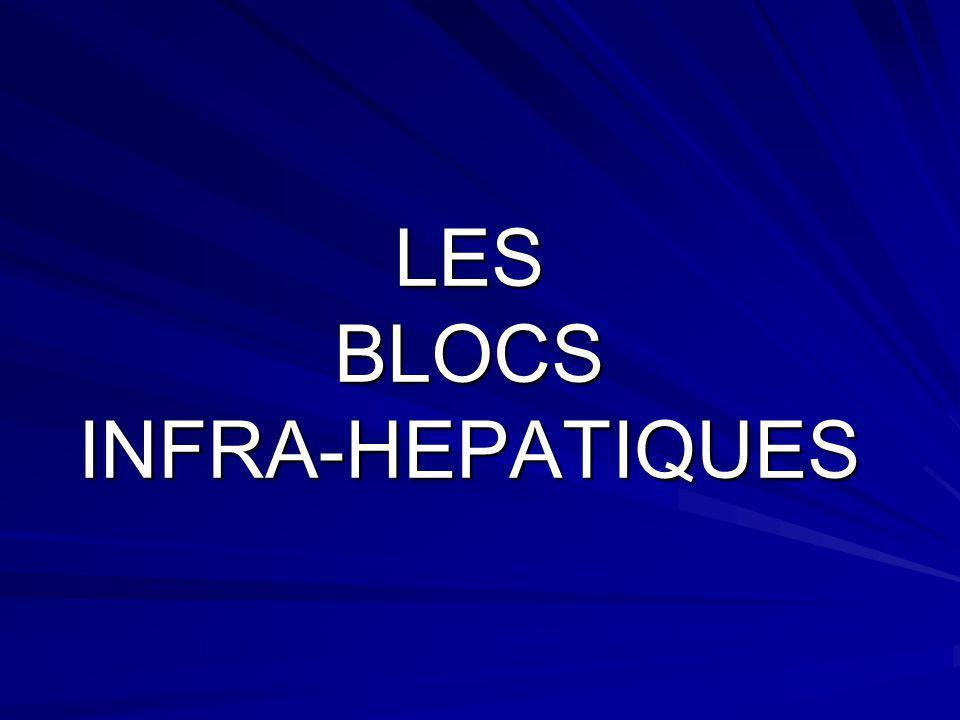 LES BLOCS INFRA-HEPATIQUES