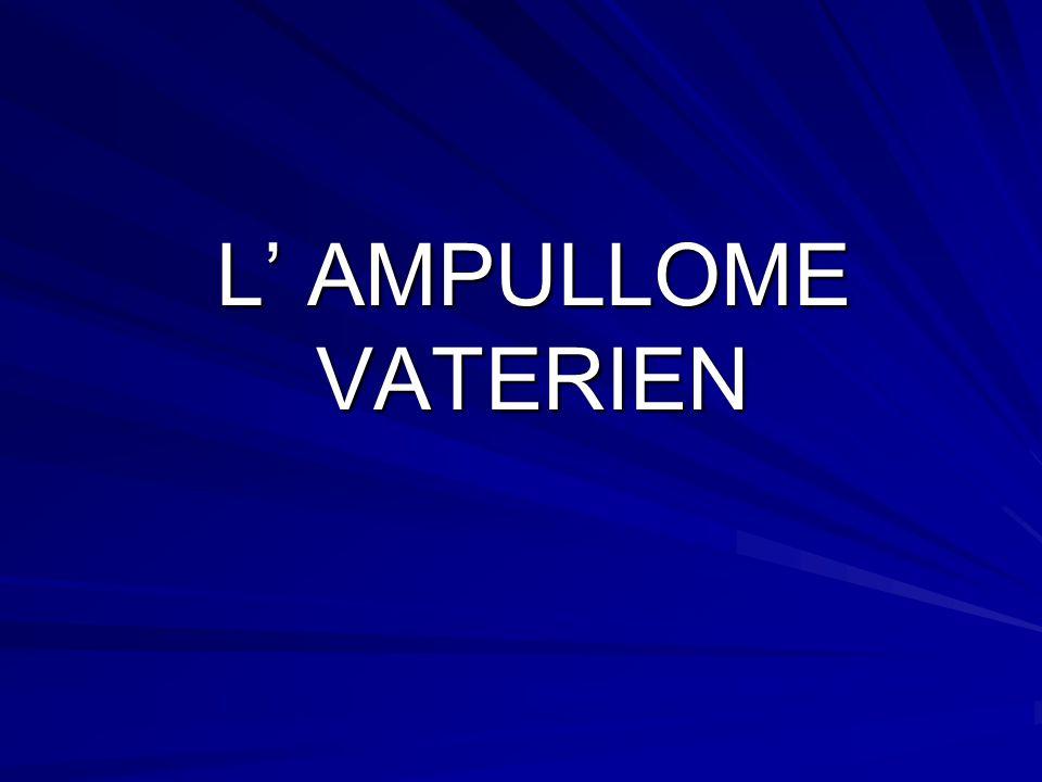 L' AMPULLOME VATERIEN
