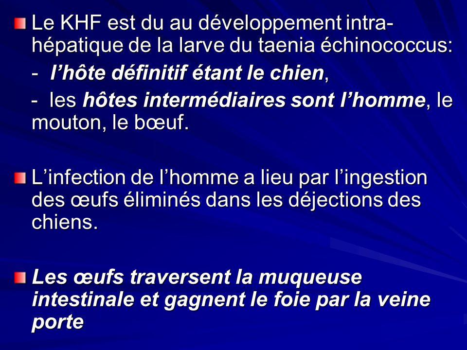 Le KHF est du au développement intra-hépatique de la larve du taenia échinococcus: