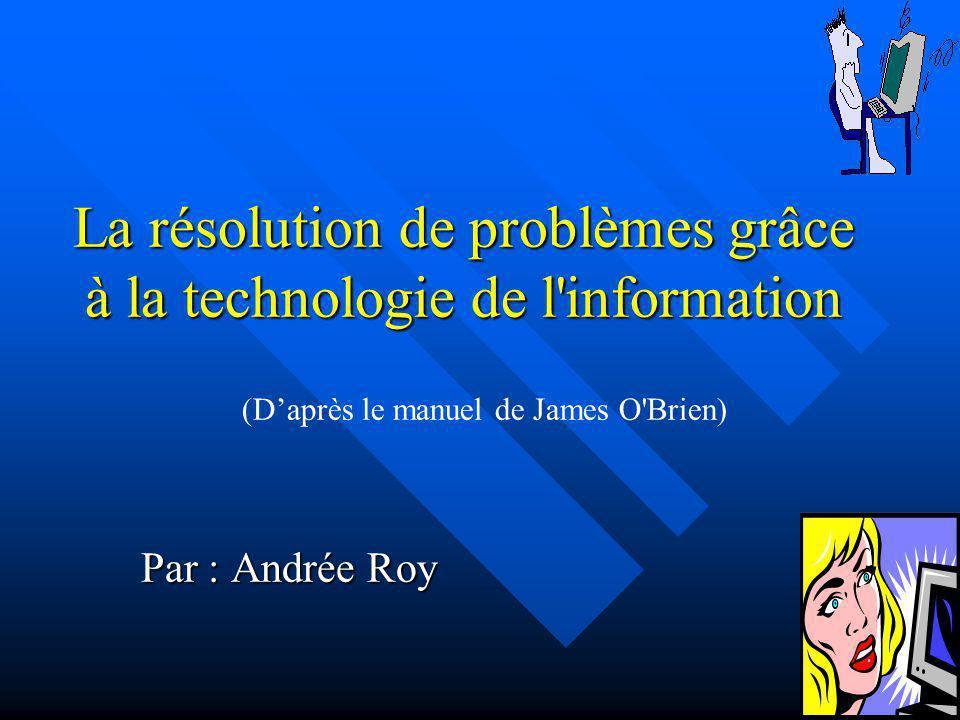 La résolution de problèmes grâce à la technologie de l information