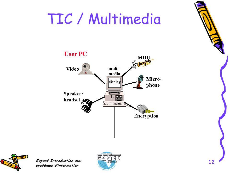 TIC / Multimedia Exposé Introduction aux systèmes d'information