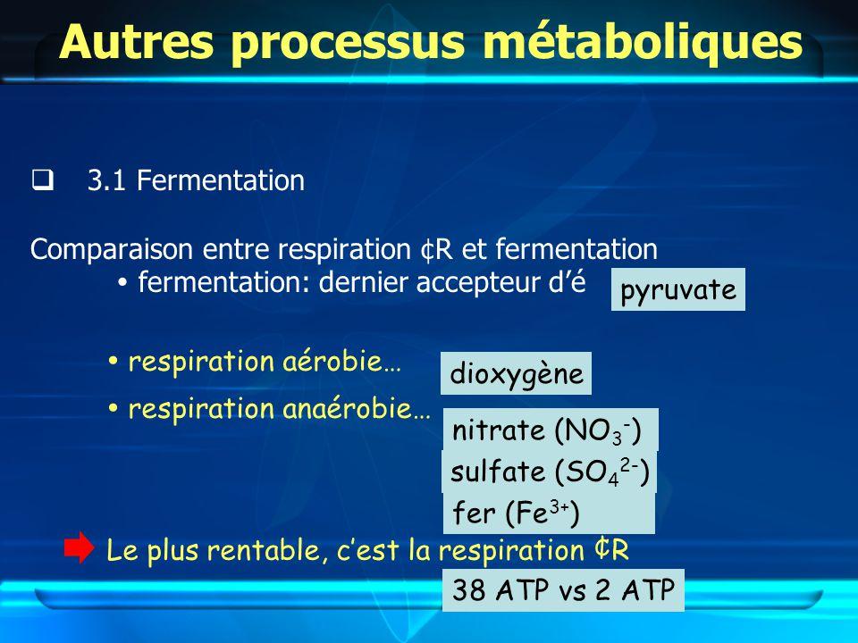 Autres processus métaboliques