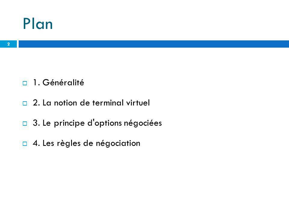 Plan 1. Généralité 2. La notion de terminal virtuel