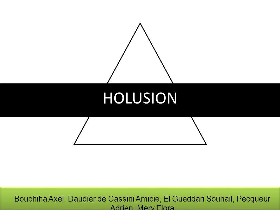 HOLUSION Bouchiha Axel, Daudier de Cassini Amicie, El Gueddari Souhail, Pecqueur Adrien, Mery Flora
