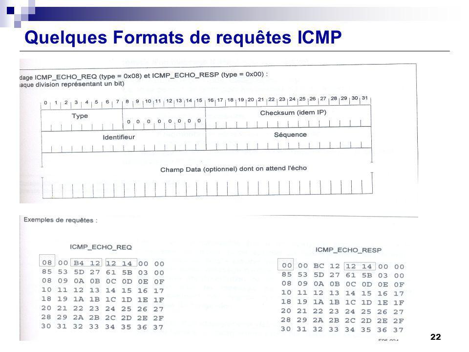 Quelques Formats de requêtes ICMP