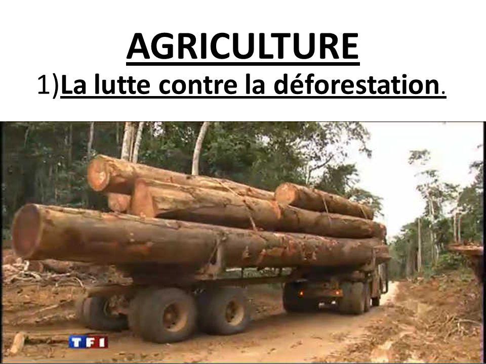AGRICULTURE 1)La lutte contre la déforestation.