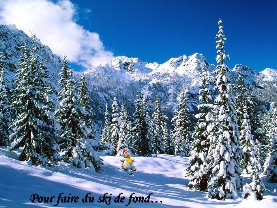 Pour faire du ski de fond…