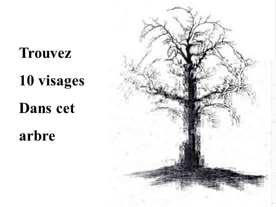 Trouvez 10 visages Dans cet arbre
