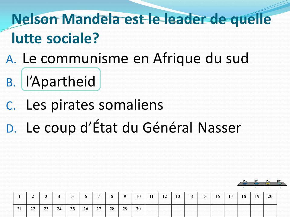 Nelson Mandela est le leader de quelle lutte sociale