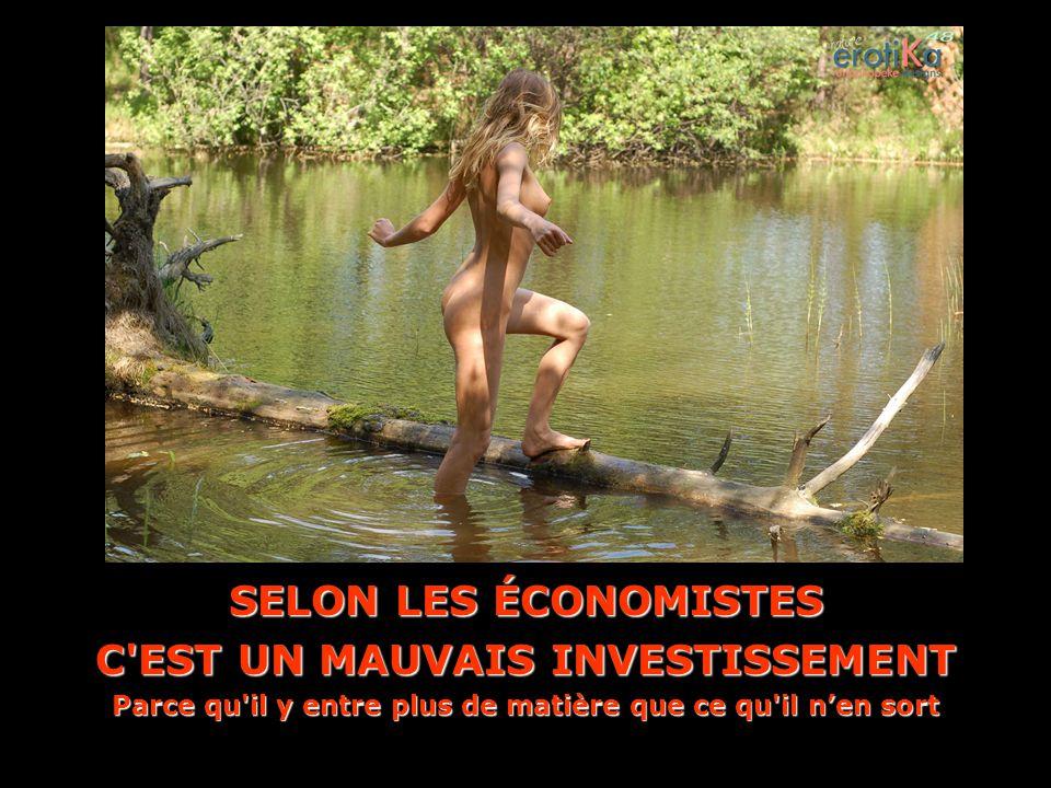 SELON LES ÉCONOMISTES C EST UN MAUVAIS INVESTISSEMENT