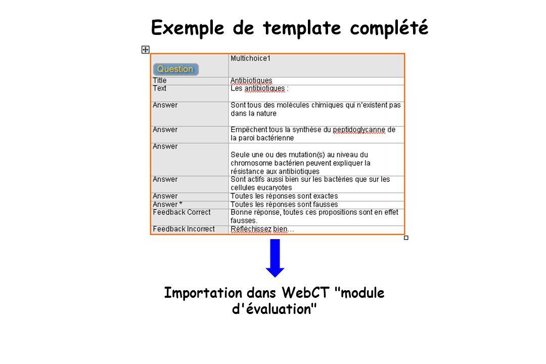 Exemple de template complété