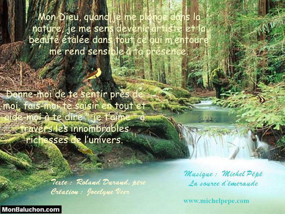 Musique : Michel Pépé La source d'émeraude