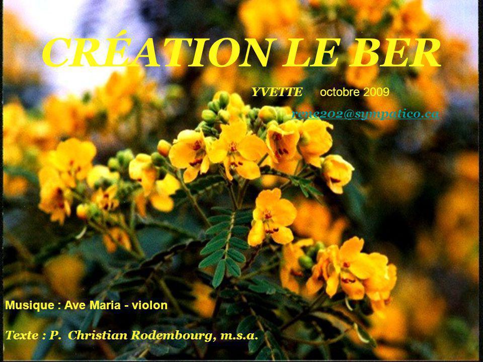 CRÉATION LE BER YVETTE octobre 2009 rene202@sympatico.ca