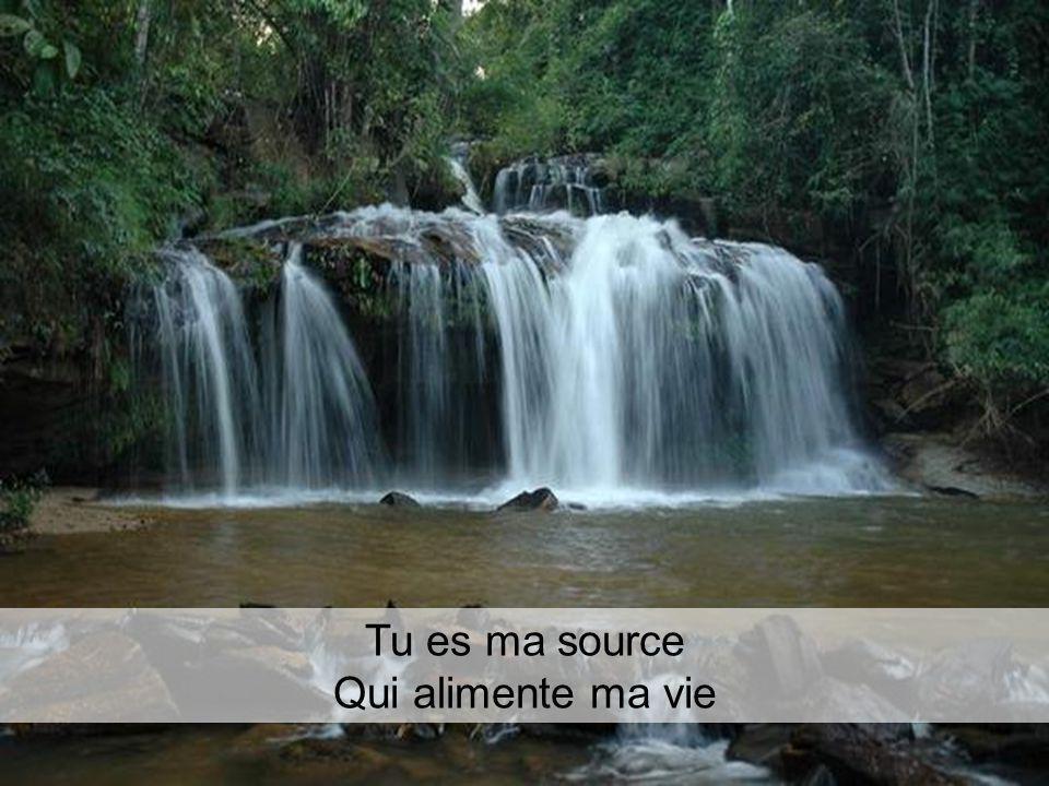 Tu es ma source Qui alimente ma vie