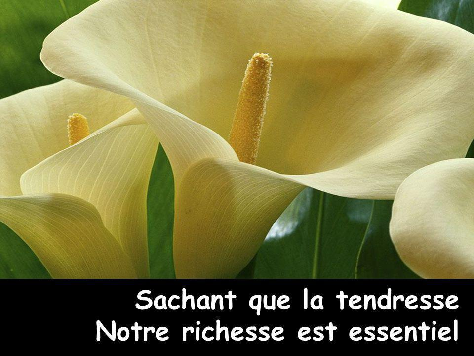 Sachant que la tendresse