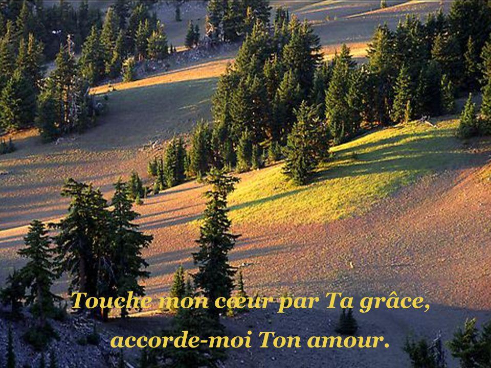 Touche mon cœur par Ta grâce,