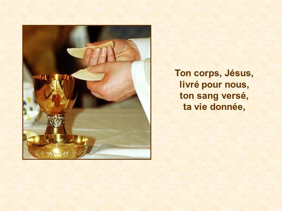Ton corps, Jésus, livré pour nous, ton sang versé, ta vie donnée,