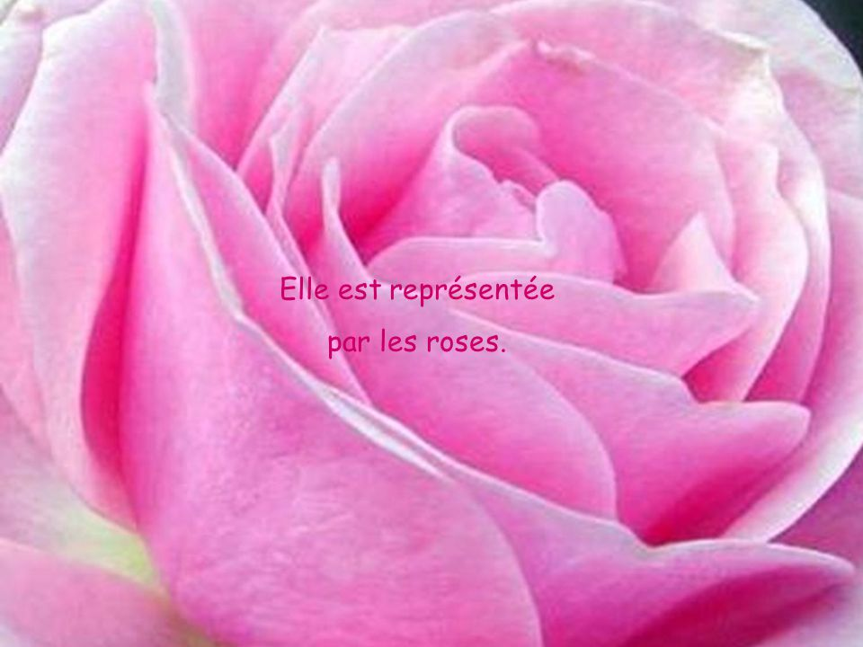 Elle est représentée par les roses.