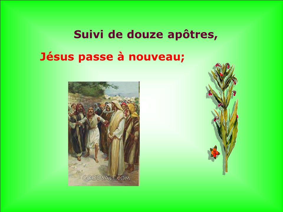 Suivi de douze apôtres, Jésus passe à nouveau;