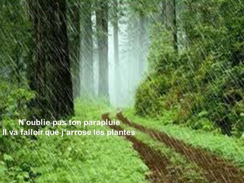 N'oublie pas ton parapluie Il va falloir que j'arrose les plantes
