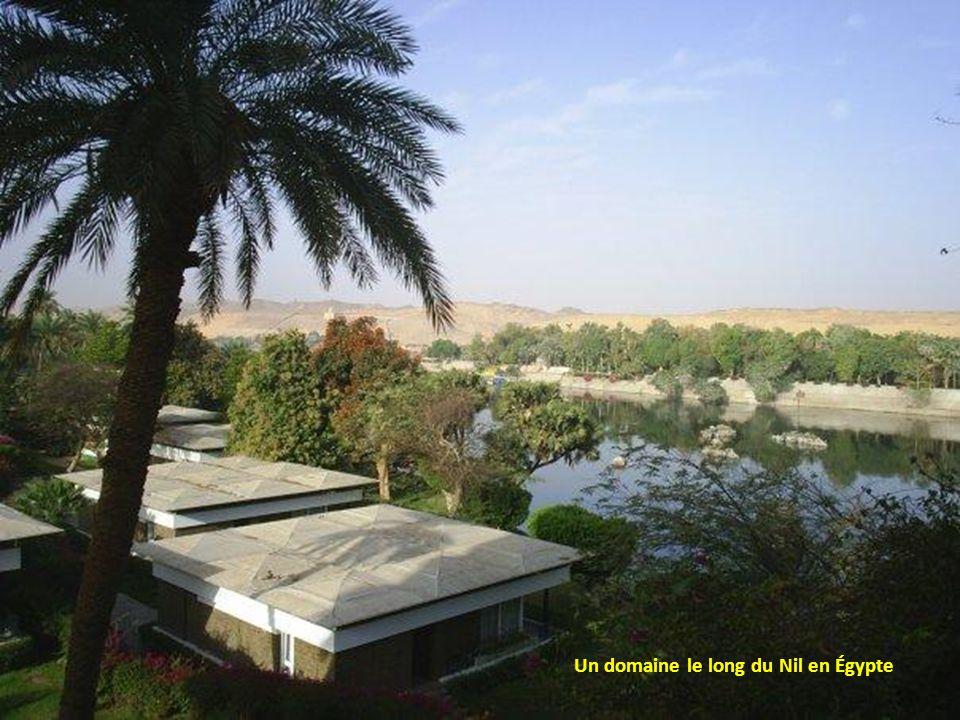 Un domaine le long du Nil en Égypte