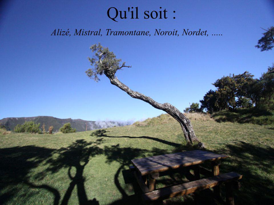 Alizé, Mistral, Tramontane, Noroit, Nordet, .....