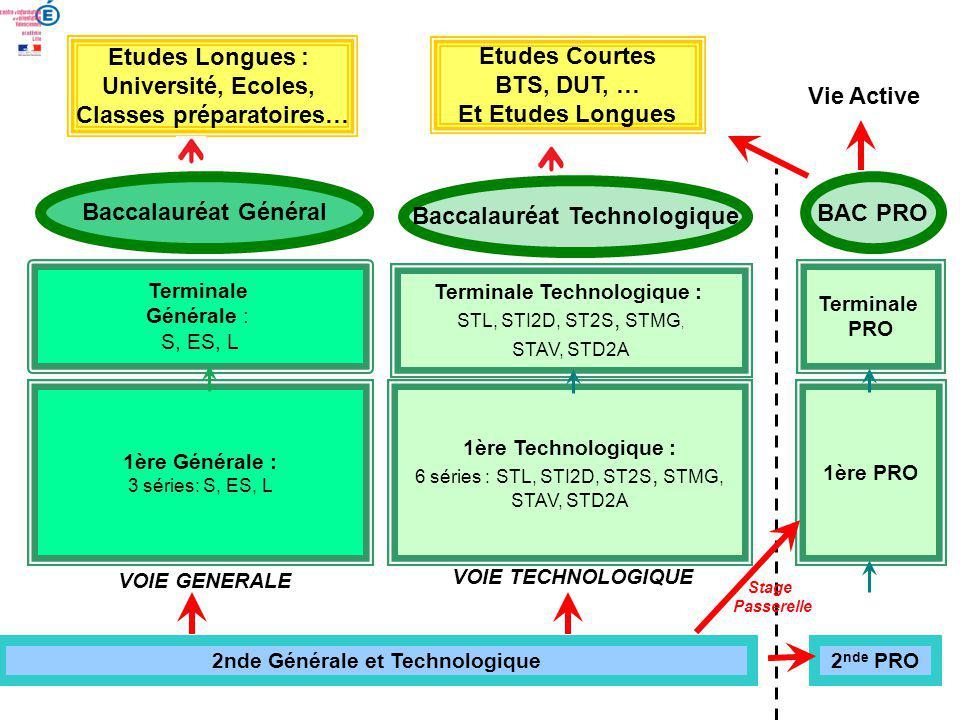Classes préparatoires… Etudes Courtes BTS, DUT, … Et Etudes Longues