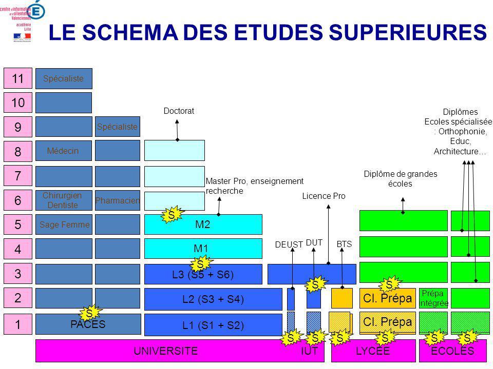 LE SCHEMA DES ETUDES SUPERIEURES