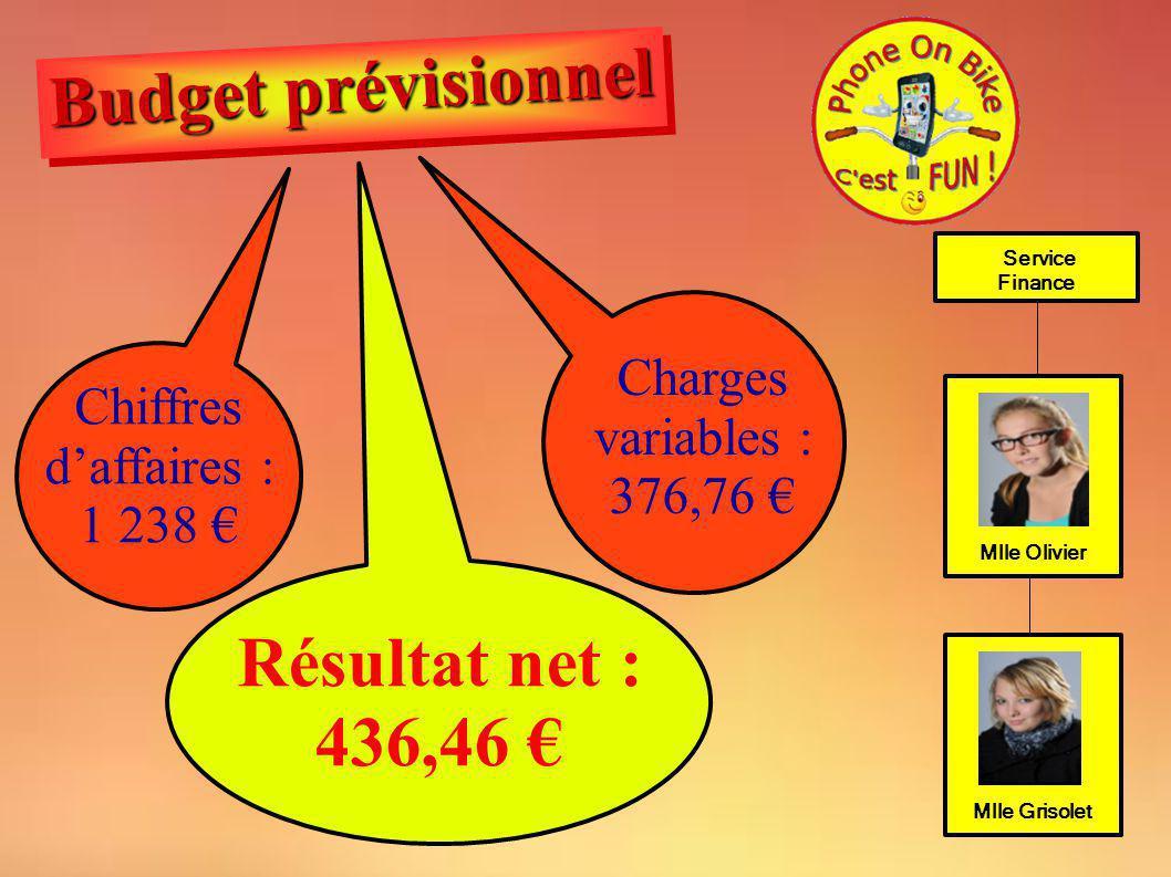 Chiffres d'affaires : 1 238 €